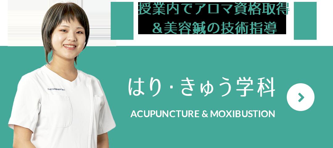 授業内でアロマ資格取得&美容鍼の技術指導 はり・きゅう学科 ACUPUNCTURE & MOXIBUSTION